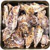 【おびゴハン】柳澤英子「牡蠣のクリーム煮」のレシピ!やせるおかず作りおき!やせおか!【11月24日】